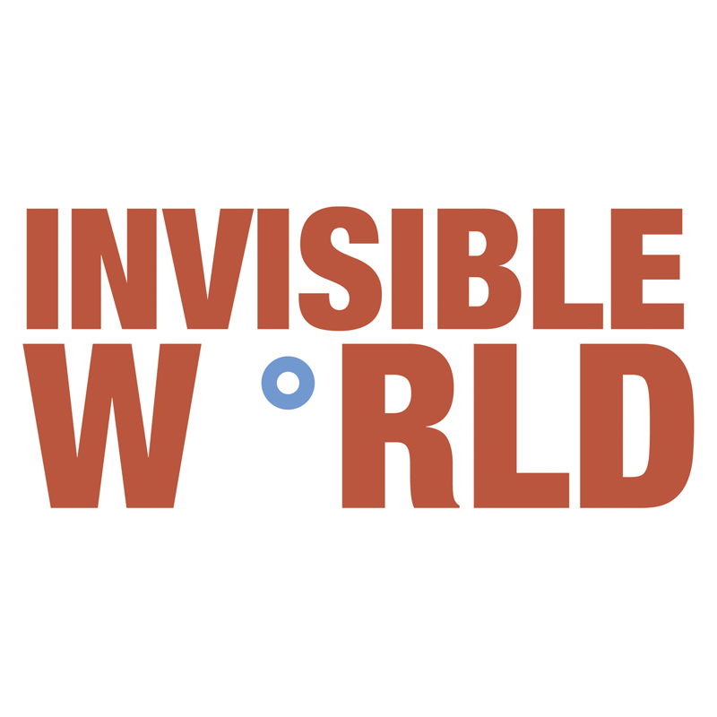 Invisible World Music